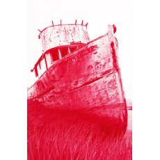 Jacquard SolarFast 8 Fl Oz Dye No 104, Red
