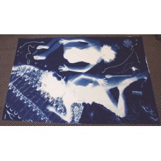 Jacquard Cyanotype Pretreated Mural Fabric